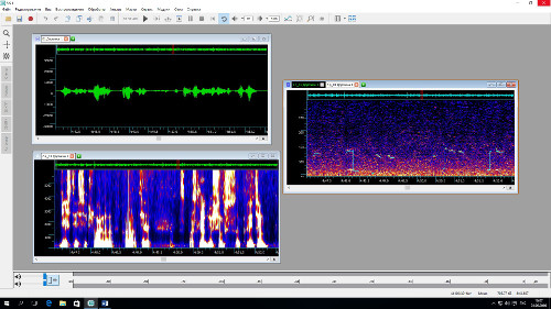 Осциллограмма, спектрограмма, кепстр и график основного тона