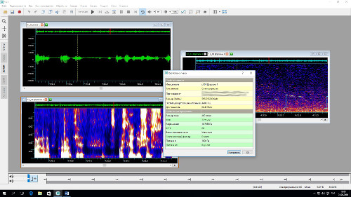 Осциллограмма, спектрограмма, кепстр и график основного тона, а также окно с информацией о спектрограмме