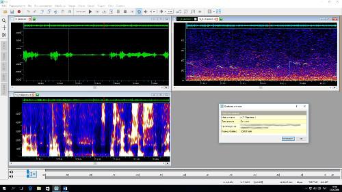 Осциллограмма, спектрограмма, кепстр и график основного тона, а также окно с информацией об окне с графиком основного тона