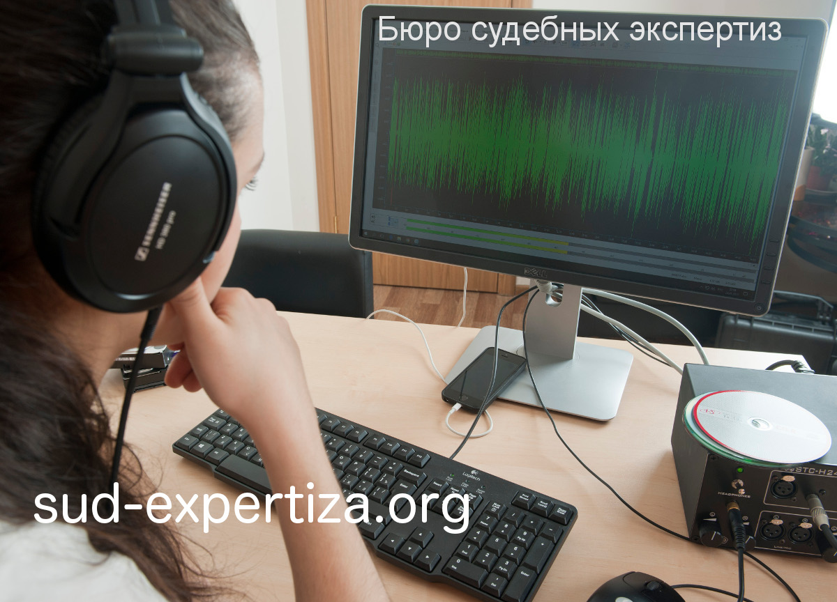 Раскрытие преступления при помощи фоноскопической экспертизы